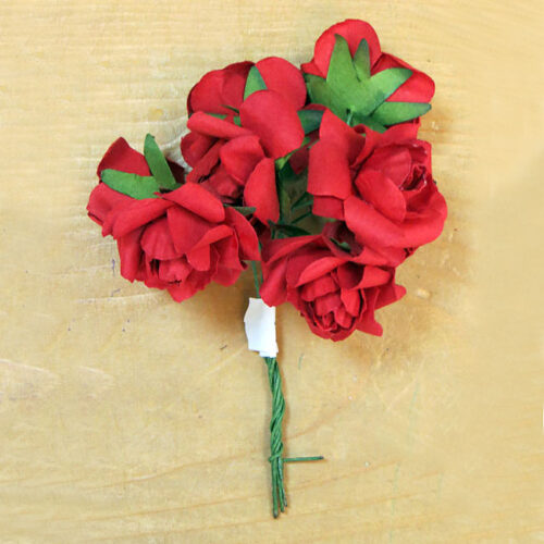 Τριαντάφυλλα-μινιατούρα κόκκινα
