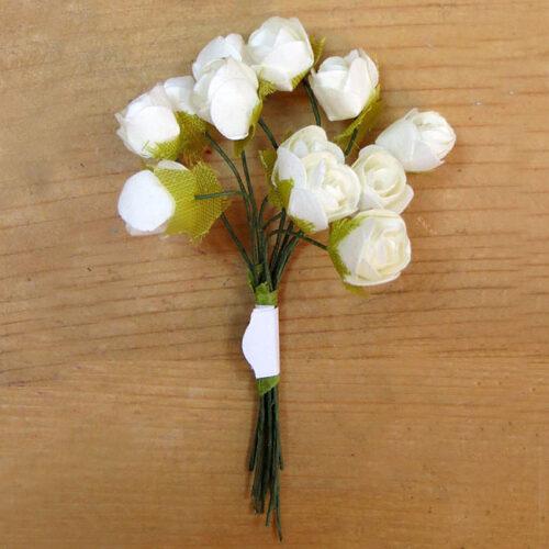 Τριαντάφυλλα-μινιατούρα εκρού